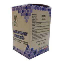 Doğan - Bal Polen Zencefil Karışımı 230Gr (1)