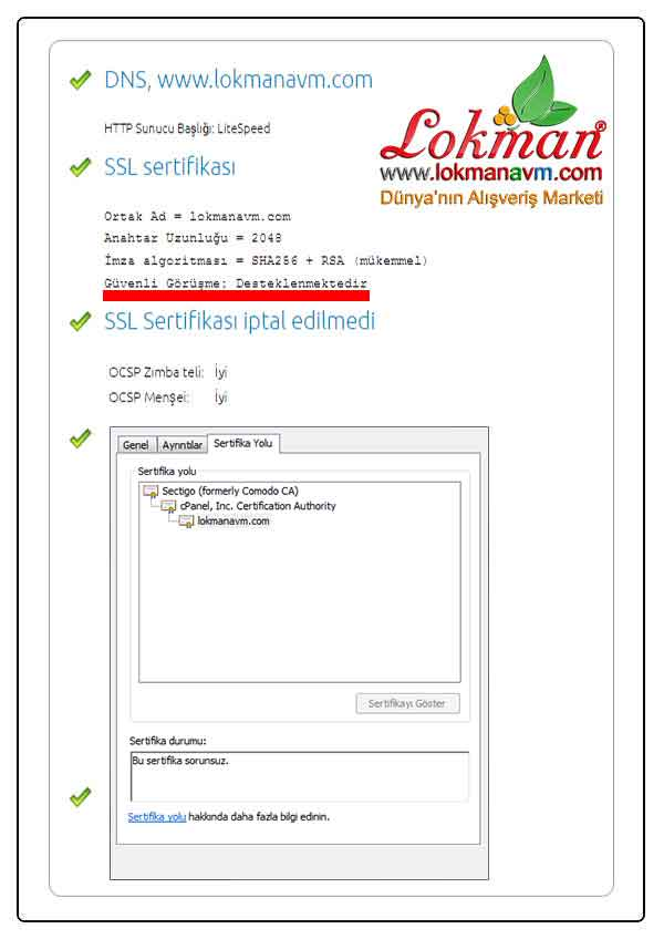 Rapid SSL Şifreli Kriptolu Güvenlik Sertifikası LokmanAVM