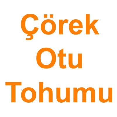 Çöreotu Tohumu kategorisi ürünlerini inceleyin!