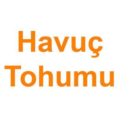 Havuç Tohumu kategorisi ürünlerini inceleyin!