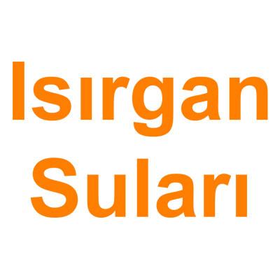 Isırgan Suları kategorisi ürünlerini inceleyin!