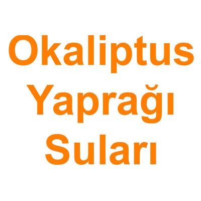 Okaliptus Yaprağı Suları kategorisi ürünlerini inceleyin!
