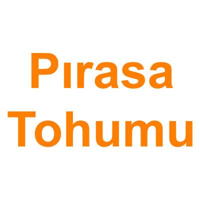 Pırasa Tohumu kategorisi ürünlerini inceleyin!