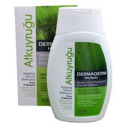 DermaDerm - Atkuyruğu Kırkkilit Otu Özlü Kepek ve Saç Dökülmesine Karşı Şampuan 300 ML (1)