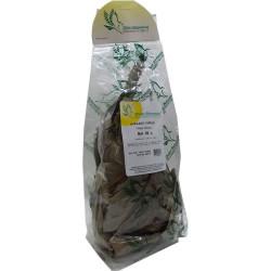 Avokado Yaprağı 50Gr Pkt - Thumbnail
