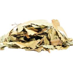 Çınar Yaprağı 100 Gr Paket - Thumbnail