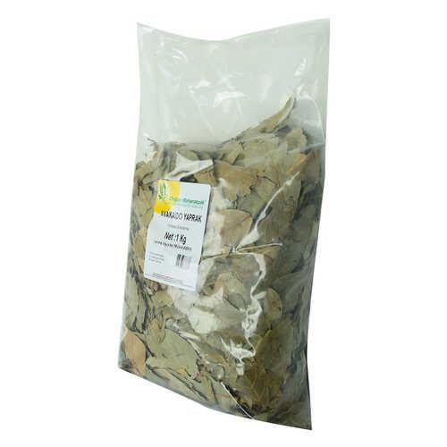 Doğal Avakado Yaprağı 1000 Gr Paket