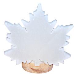 LokmanAVM - Doğal Çınar Yaprağı Desenli Kaya Tuzu Lambası Kablolu Ampullü Beyaz 2-3 Kg Görseli