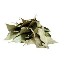 Doğal Defne Yaprağı 1000 Gr Paket - Thumbnail