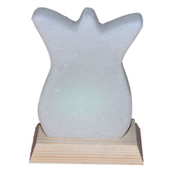 Lale Desenli Kaya Tuzu Lambası 1-2Kg - Thumbnail