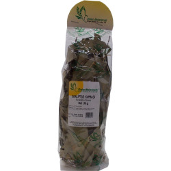 Okaliptus Yaprağı 50Gr Pkt - Thumbnail