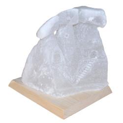 Üç Bacalı Peribacası Doğal Kaya Tuzu Lambası Çankırı Kablolu Ampullü Beyaz 7 - 8 Kg - Thumbnail